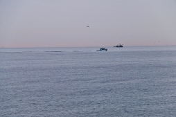 Fishing boats head out to work very early in the morning.